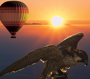 Hot Air Balloon Ride, Breakfast & Wildlife Safari in Vintage Land Rover