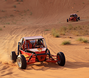 Dune Buggy Safari